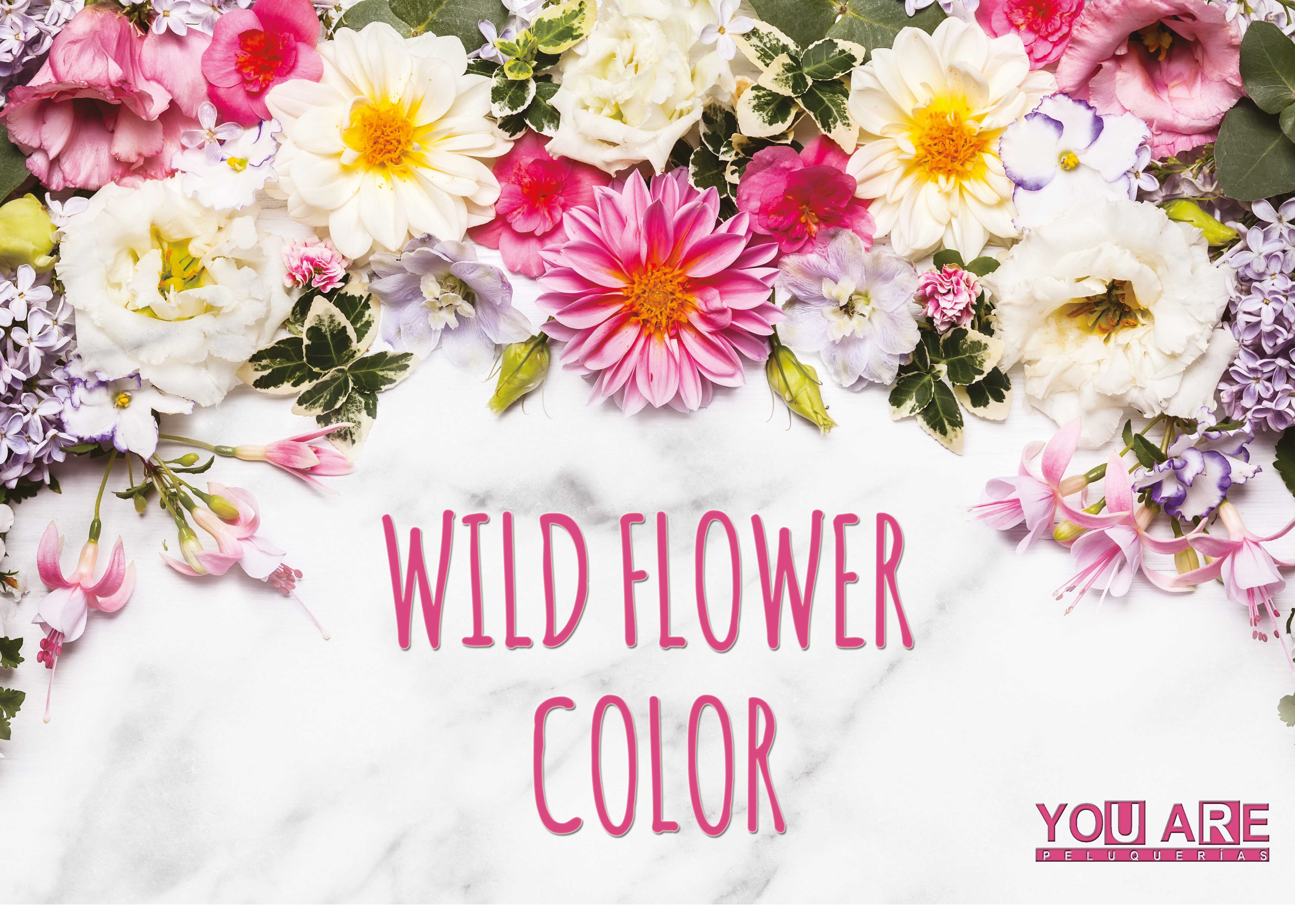 WILD FLOWER COLOR